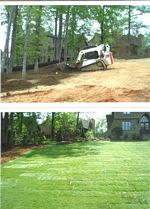 Landscaping Sod Project Photo 4